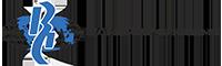 Vlibor_logo