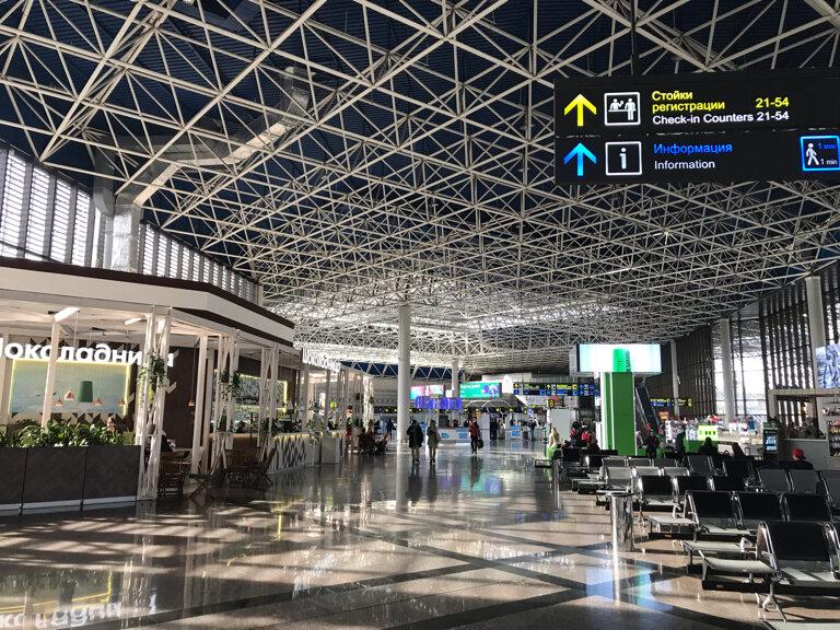 Видеонаблюдение для ОЭК, Сбербанка и аэропорта Сочи: тендеры начала марта за 221 млн рублей