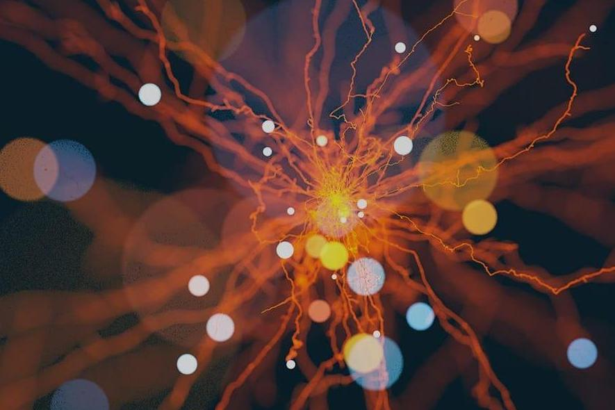 Искусственный интеллект и машинное обучение в бизнесе